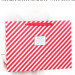 Shopping Package Paper Bag for Gift of China Supplier